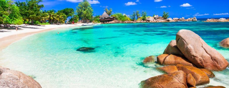 Trips to paradisiacal beaches