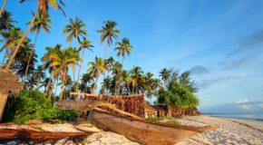 what to do in Zanzibar