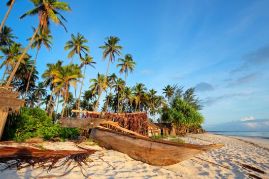 what to do in Zanzibar