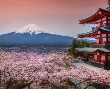 Olympische Spiele 2020 in Tokio: Japan entdecken
