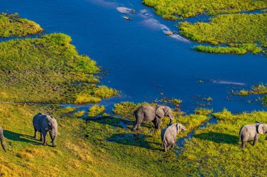 Die Beste Reisezeit für Botswana
