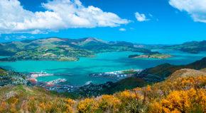 Die Beste Reisezeit für Neuseeland