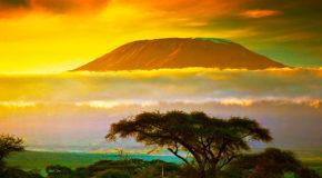 Die Beste Reisezeit für Tansania