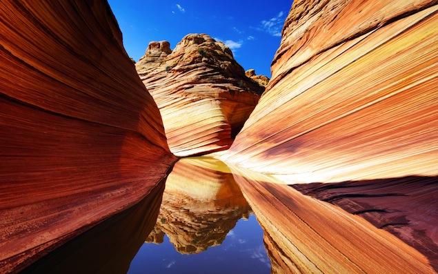Ola del desierto, Arizona