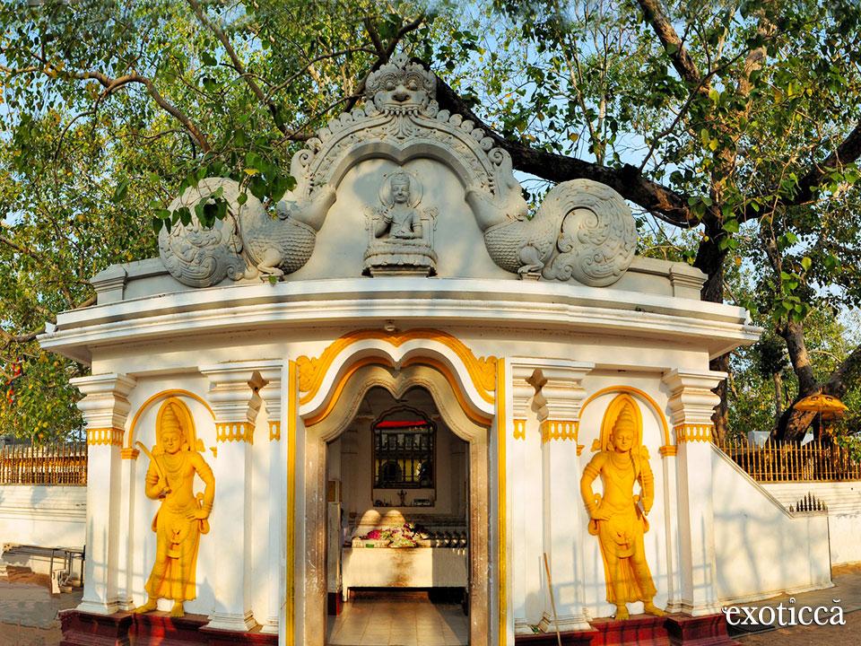 Consejos para entrar en templos de Sri Lanka