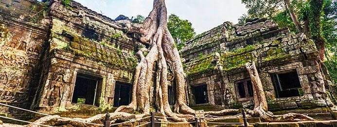 encanto de los templos de angkor