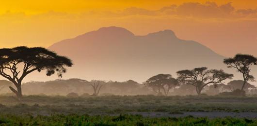 sabana de Kenia