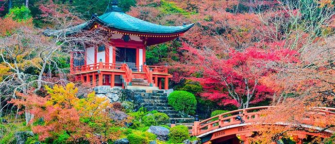 kioto en otoño