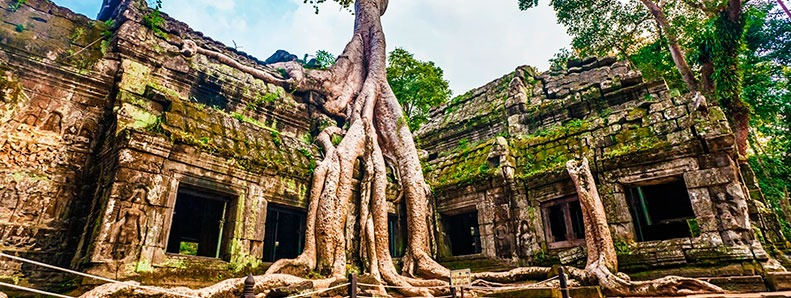 ta-prhom-temple-03 (1)