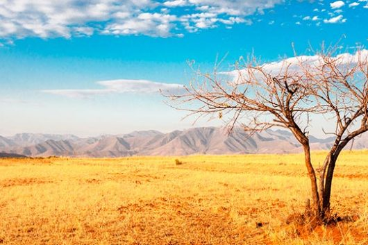 Los parques naturales de África más impresionantes