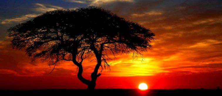 cuándo viajar a Zimbabwe