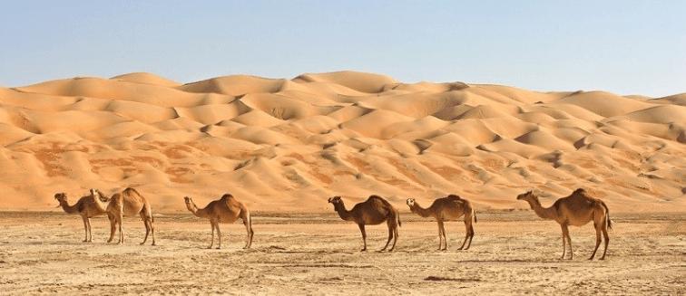mejor época para viajar a Omán