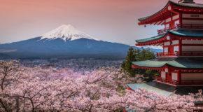 Juegos olímpicos 2020 en Tokio | Descubre Japón