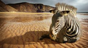 playas africanas paradisiacas