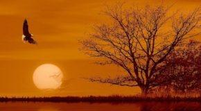 les plus beaux couchers de soleil