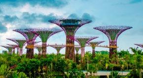 Quand partir à Singapour