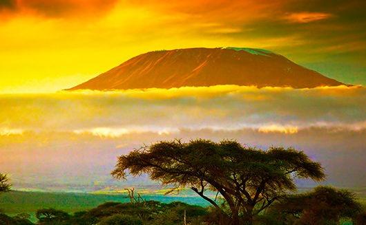 Quand partir en Tanzanie