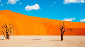 Quand partir au Namibie