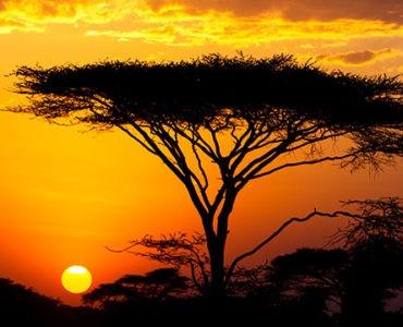kenia sunset