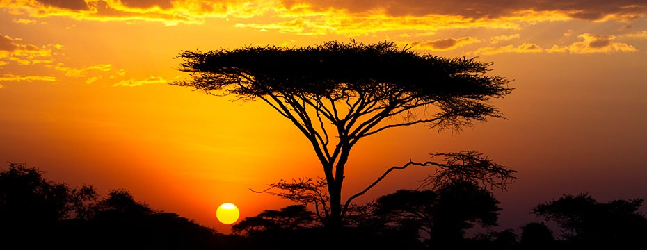 kenia sunset