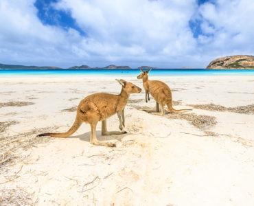 travel to Australia