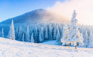 Top 8 winter trips What to do during the winter