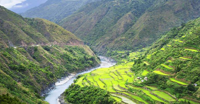 Rice field of Batad