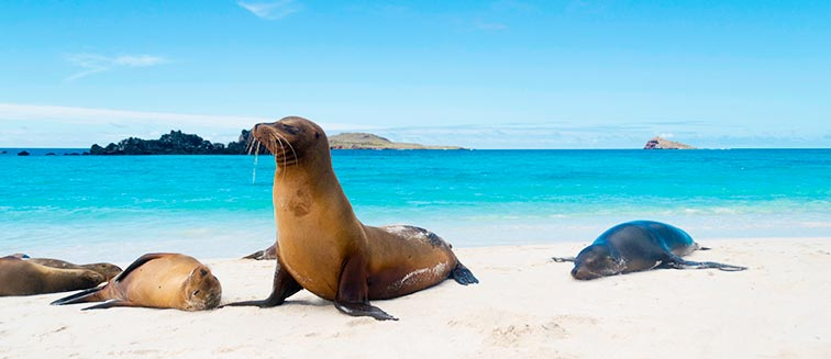 Galapagos Islands in March