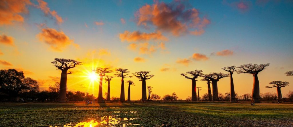 When is the best time to visit Madagascar