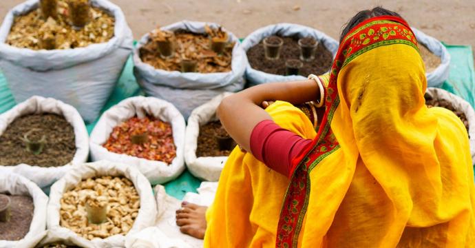 best vegetarian destinations: India