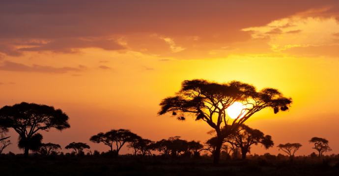 Maasai Mara African safaris