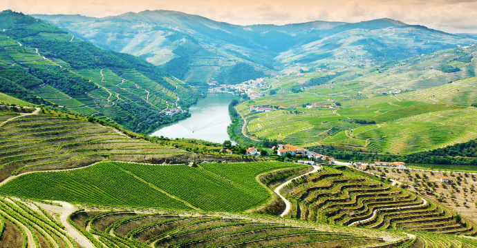 Douro Valley: places to see autumn leaves