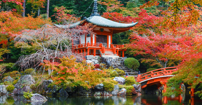 Kyoto: places to visit in fall