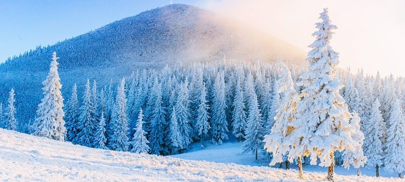 Top-8-winter-trips-What-to-do-during-the-winter-800x360