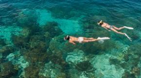 Best swimming spots on earth